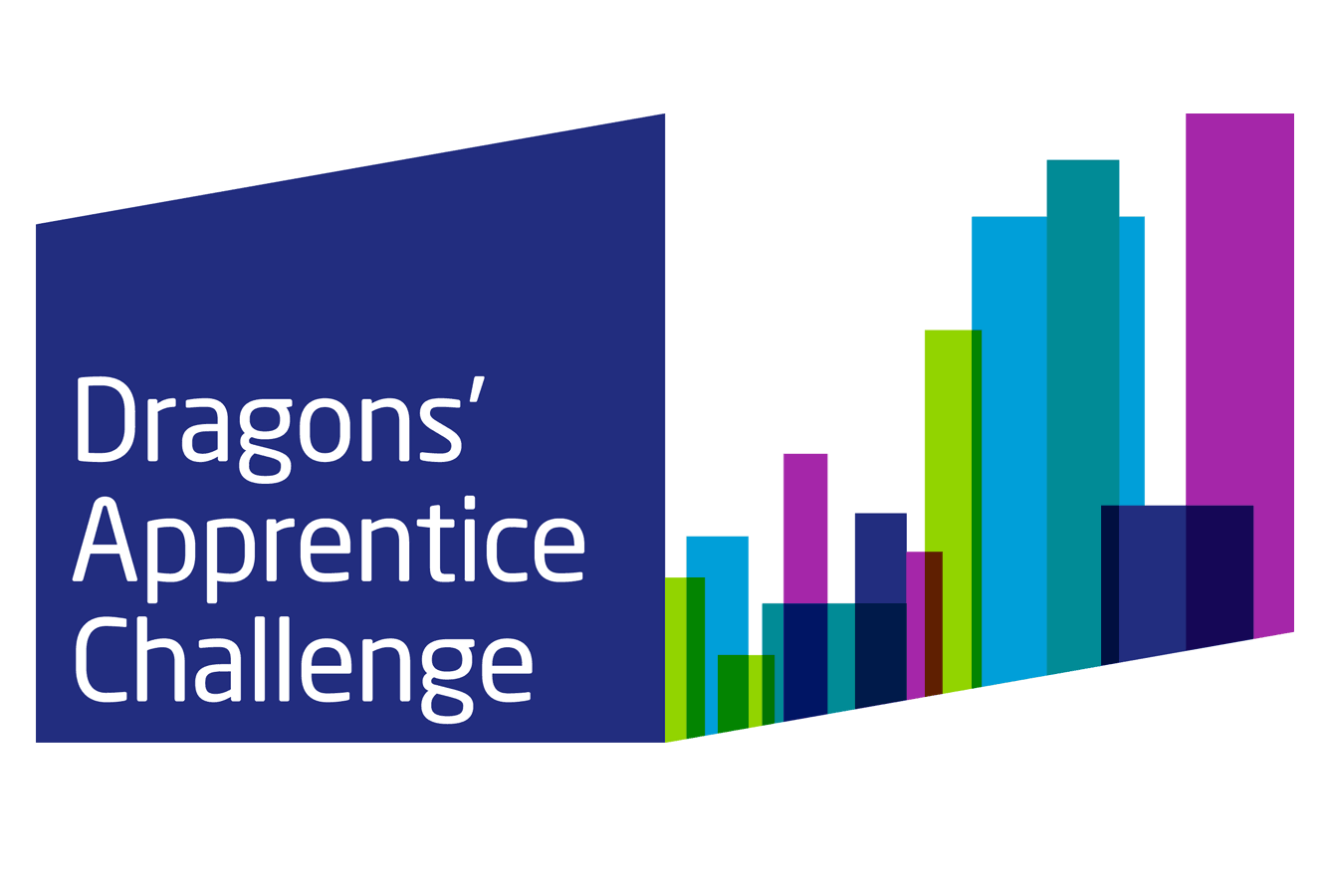 Dragons Apprentice Challenge